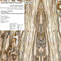 TRAVERTINE STONE-IRAN DS-T-10 Azarshahr-Walnut-Travertine